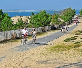 Cycling holidays from Bordeaux vineyards to the Atlantic