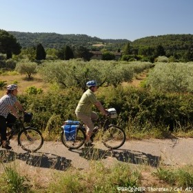4-day bike trip in the heart of Provence