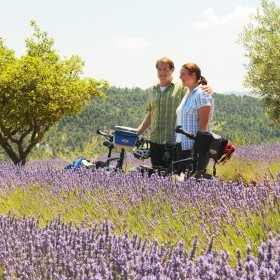 4-day cycling tour in Provence
