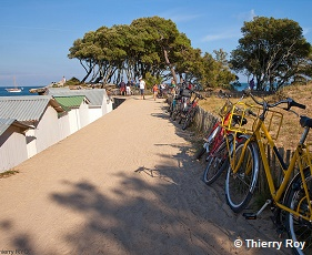 /doc/photos/photos/rochelle-iledere/cote-atlantique-a-velo-pc0401thierryroy.jpg